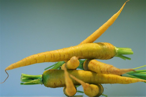 Yellow carrots 2