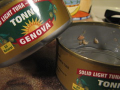 Italian tuna & olive oil