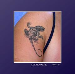 KERTENMEME_0002 (dR YTY) Tags: meme kol tatuaj kertenkele dvme kertenmeme