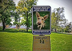 Poop Police! (FotoEdge) Tags: pets dogs walk parks pickup clean kansascity pollution poop landmines recreation sniffing potty globalwarming stinks dogipot pooppolice