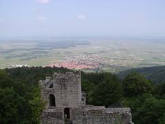 Dambach from Chateau du Bernstein tower