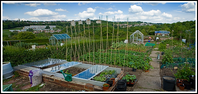 2007-05-20  Allotment - Greenhouse base finished  049+50 Cropped copy
