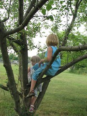 Girls up in an apple tree