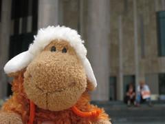 Au muse (tangi_bertin) Tags: art modern sheep muse nici mouton hongrie hongaria virela virela2 virela3 virela4 virela5 virela6 virela7 virela8 virela9 virela10 virela1 lumu moutonv