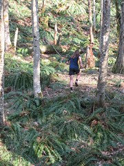 John running up the hill