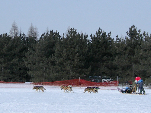 Dogsled in Canada by helenmoverland, on Flickr