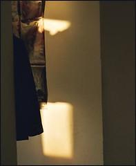 illuminations - by swswann
