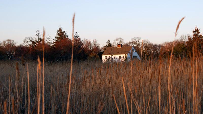Marsh at Bayport