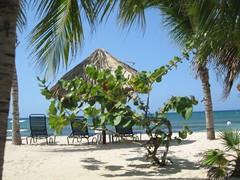 jamaica 196