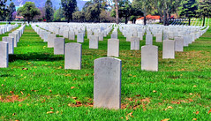 Los Angeles National Cemetery 6 (Pat's Travelogue) Tags: cemetery los angeles westwood blvd wilshire sepulveda