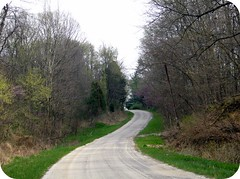 Indiana roads (indielove) Tags: road woods photo365