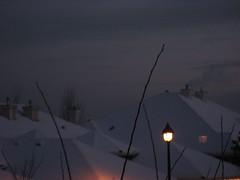 Snow-covered roof tops (peggyhr) Tags: orange tree yellow sunrise gold edmonton rooflines