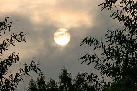 Sunrise, J P Nagar Reserve Forest, 12 May 07