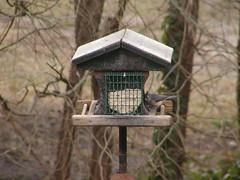 titmouse_good_1 (CapeCodAlan) Tags: birdseed titmouse ebirdseed capecodalan
