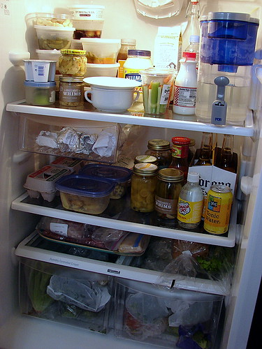 Fridge, May 13, 2007
