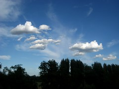 il Cielo di Milano../Milan's sky.. (SalentuCore) Tags: blue sky italy milan alberi italia milano dream cielo dreams azzurro baggio bisceglie parcodellecave milancity