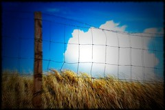 Fence Post - by _Harry Lime_
