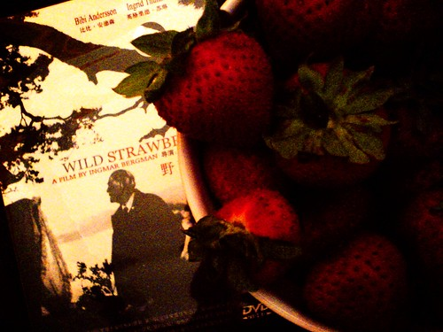 Wild Strawberries and Organic Strawberries