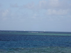 Great Barrier Reef5