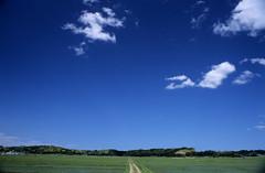 blue_blue_sky