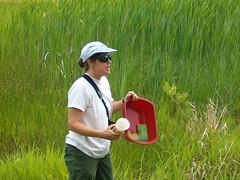 2006 05 wetlands (42) (Kaw Valley Heritage Alliance) Tags: education volunteers environmental wetlands protection wetland lawrencekansas audubon learners bakerwetlands streamlink