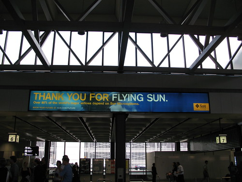 Thank you for Flying Sun