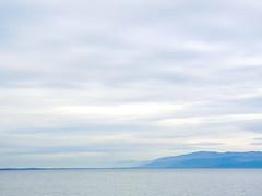 the other shore (phacelias) Tags: lake lago meer sky cielo lucht bewolkt cloudy nuvoloso di lagoditrasimeno