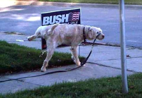 dog-pees-on-bush-sign