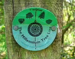 Millennium Tree Line (nutmeg66) Tags: trees nature lincolnshire april meridian 2007 canonpowershot naturereserves snipedales lincolnshirewolds a640 lincolnshirewildlifetrust millenniumtreeline