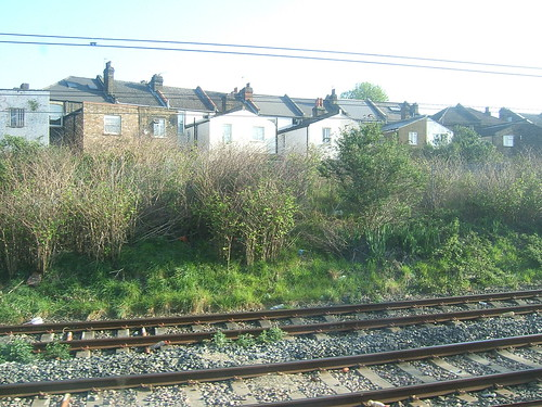Approaching Willesden Junction