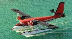 8Q-QHC (╚ DD╔) Tags: birds sunrise airport aircraft maldives didi a340 hussain twinotter dhc6 aplusphoto