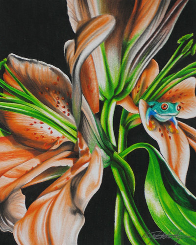 My Artwork - COLORED PENCIL (Set) · Flowers (Set)