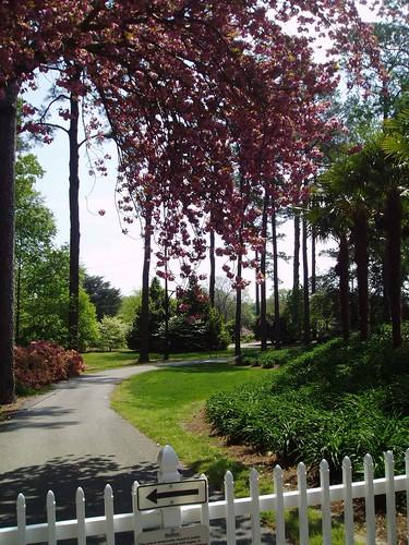 Botanical_Gardens_031