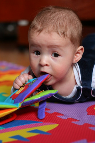 Baby eating Toy