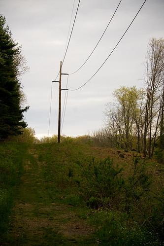 creepy pole