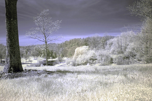 With infrared filter