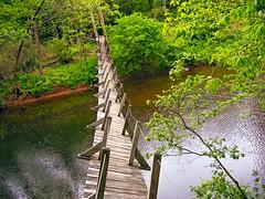 a long, narrow, wooden, pedestrian suspension bridge across a deep, watery canyon