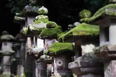 Nara (` Toshio ') Tags: japan temple japanese moss shrine asia path nara shinto toshio flickrsbest impressedbeauty