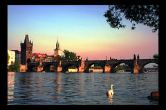 Navigating to Charles Bridge in Prague (! .  Angela Lobefaro . !) Tags: trip travel bridge sunset vacation sky building castle cars nature water girl leaves topv111 architecture night clouds river subway interestingness firefox bravo searchthebest czech prague quality patterns gimp himmel prag praha praga topv222 explore cielo nubes linux czechrepublic frontpage ubuntu idyllic vltava allrightsreserved coucherdesoleil italians isola outstanding kubuntu 1025faves digikam x500 50faves someonelovesthisshot 2550faves explored i500 cesvi natuzzi bestphotosonflickr mywinners bestpicturesonflickr holidaysvacanzeurlaub angiereal superbmasterpiece superhearts theunforgettablepictures noqualitynocry maxgreco angelalobefaro angelamlobefaro wwwcesviorg angelamarialobefaro massimilianogreco riproduzioneriservata