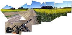 Going for a bike ride (Steffe) Tags: road summer panorama bike composite rural sweden haninge hockney joiner gravelroad rapeseed nedersta hockneyesque butitwasworthit theworkonthistooklongerthanthebikeride utata:project=green utata:project=pieces