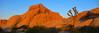 Joshua Tree NP (Erwin Geertsema) Tags: california sunset usa landscape nationalpark joshuatreenp specland