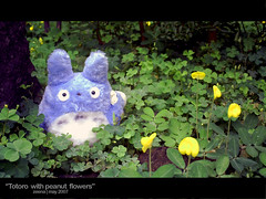 totoro with peanut flower (zna) Tags: stuffedtoy anime flower garden toy totoro peanut ghibli