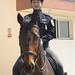 Dalian Women Mounted Police