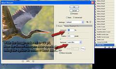 SmartSharpen Tutorial (0 W8ing) Tags: tutorial sharpening historybrush 0w8ing adobephotoshopcs2 selectivesmartsharpening finalstagesharpening