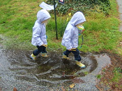 puddlejumpers