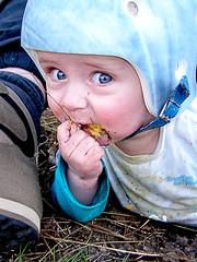 Karel picknickt