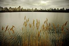 Central Park, New York, New York (Seven Seconds Before Sunrise) Tags: nyc newyorkcity lake newyork building water skyline architecture clouds skyscraper landscape unitedstates centralpark manhattan