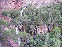 Grand Canyon Thunder River (Al_HikesAZ) Tags: park arizona creek 510fav nationalpark hiking grandcanyon grand canyon hike national backpacking waterfalls backpack backcountry hikes northrim watefall inthecanyon grandcanyonnationalpark coloradoplateau gcnp awesomenature thunderriver unature tapeats alhikesaz azwwaterfall belowtherim