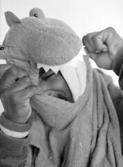 Sharkula (Sharkula) Tags: street music chicago shark hiphop rap legend sharkula parkula darkula