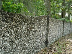 Tabby Wall, St. Augustine